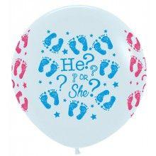 Reuzeballon Gender reveal